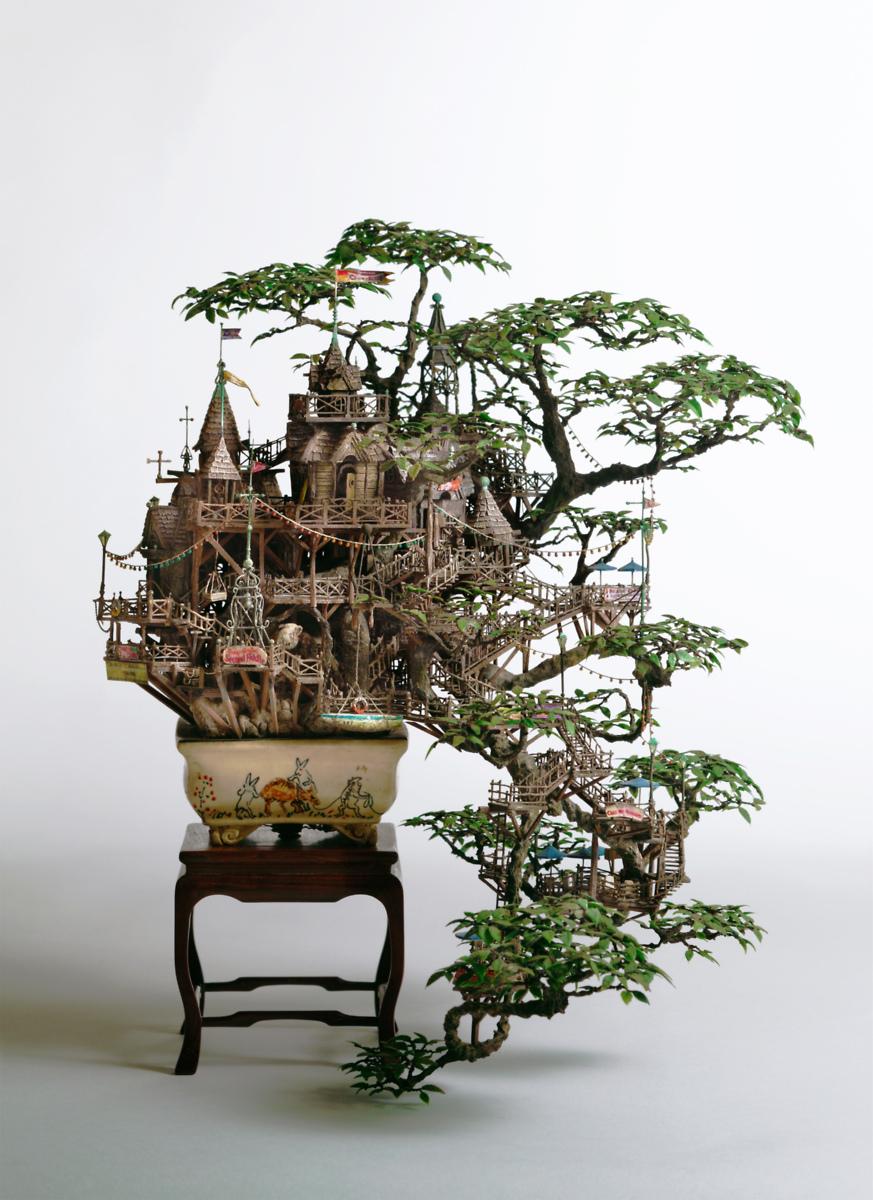 Bonsai Haus bonsai inc